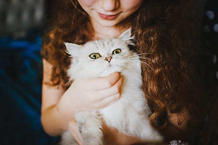 woman holding white Persian cat
