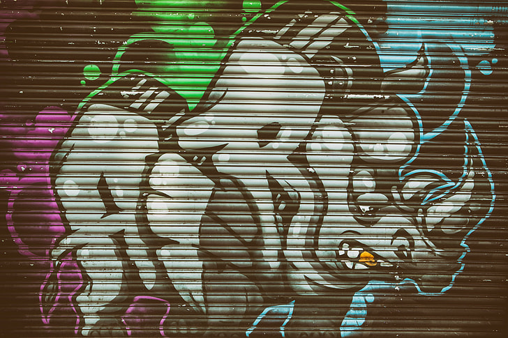 Urban street art depicting a rhino