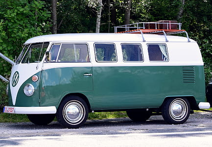 white and green Volkswagen van near trees