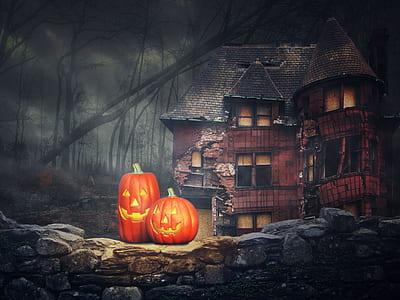 two orange pumpkins near brown building illustration