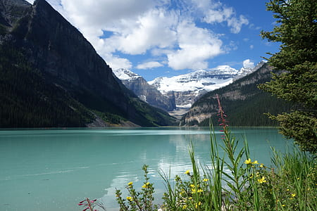 body of water beside mountains