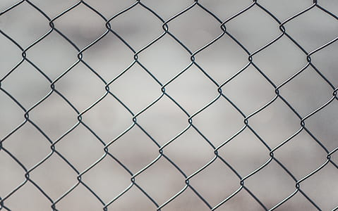 Chain Linked Fence