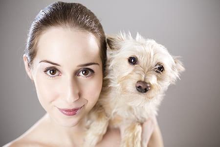woman holding long-coated white dog