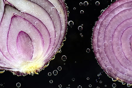 macro photograph of sliced onions