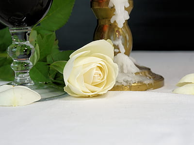 yellow rose beside two candle holders