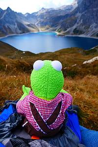 Kermit the Frog plush toy sitting on blue textile