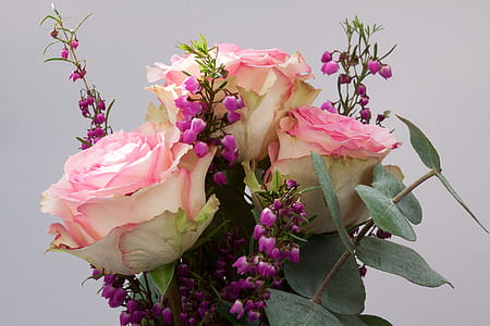 pink roses and purple bellflowers arrangement