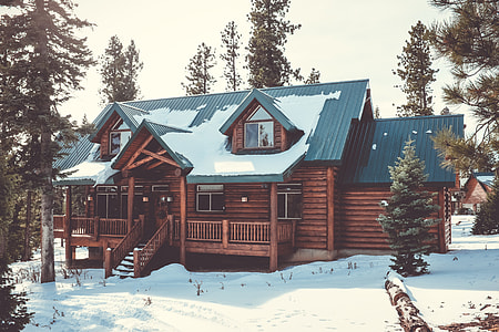 brown and green wooden house during winter