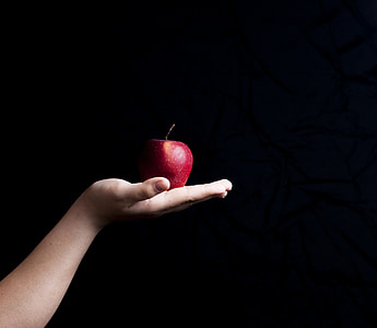 red apple on person's palm