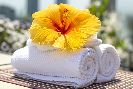 yellow hibiscus flower on white towels