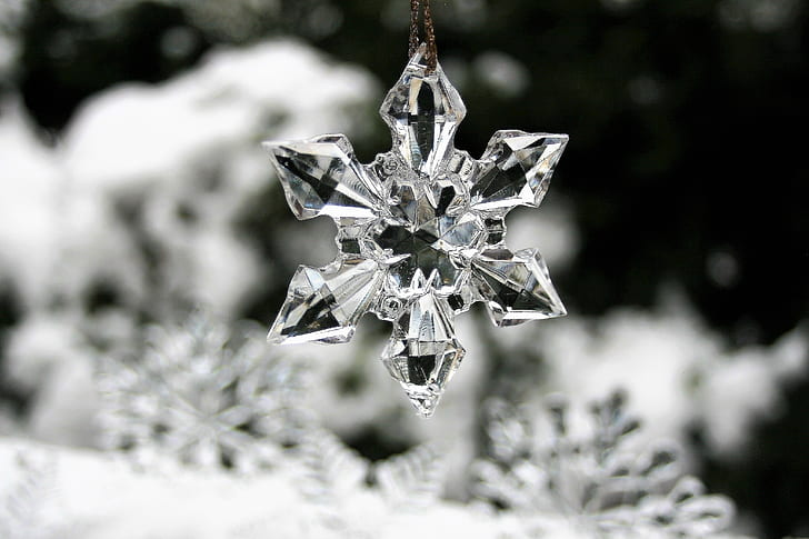 closeup photography of snowflakes