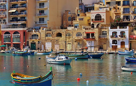 sailboats beside concrete buildings