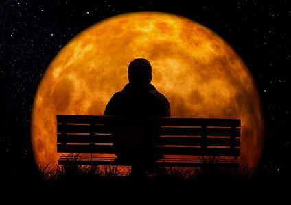 man sitting on bench facing moon