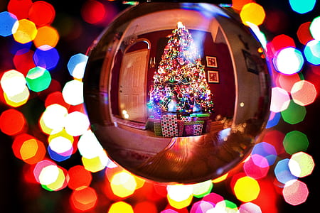 360 degree photography of Christmas tree with lights and ornaments