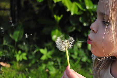 girl blowing dadelion plant