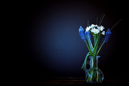white and blue grape hyacinth flower centerpiece