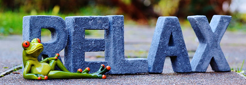 gray Relax free standing letters with green ceramic frog figurine