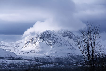 landscape photography of snowy mountain and withered tree under cloudy sky during daytime