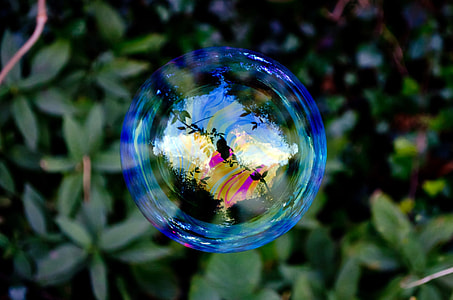 selective photography floating bubble near green leaves