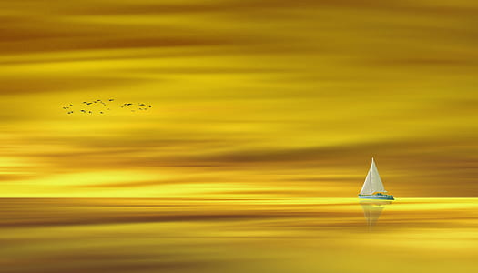 white sailboat with yellow background