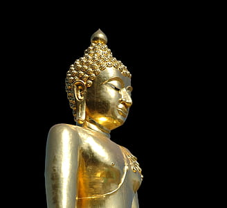 gold-colored Buddha