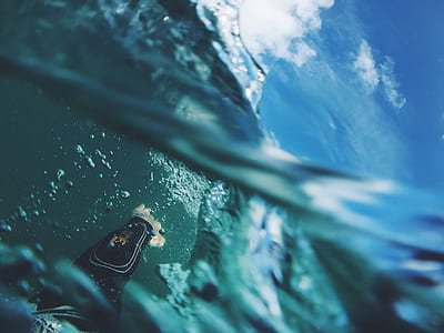 underwater photography during daytime