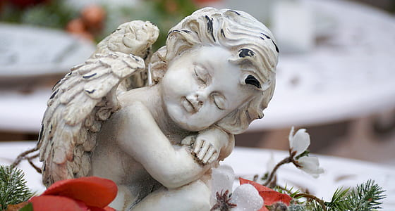 closeup photography cherub