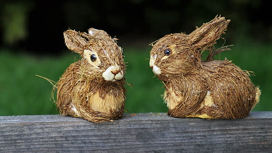 two brown bunnies on fence