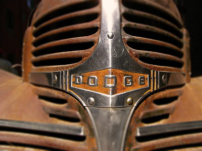 closeup photo of brown and silver Dodge emblem