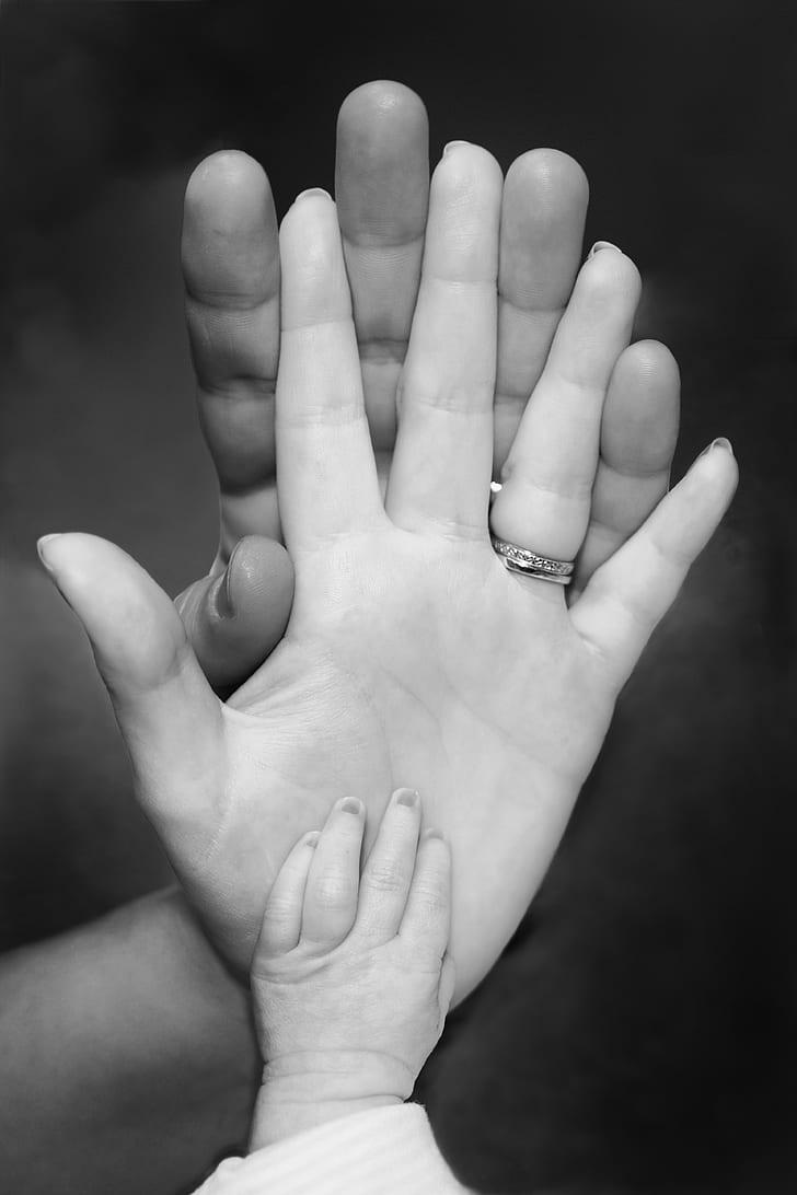 family hands photo