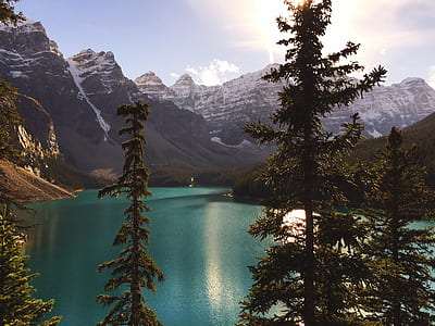 body of water surrounded trees with mountains during golden hour