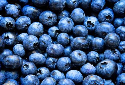 blue blueberries lot