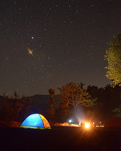 Photo of Blue and Yellow Lighted Dome Tent Surrounded by Plants during Night Time