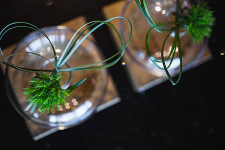 Little grass bundle with a ribbon in a glass jar