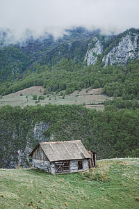 brown wooden cabin on mountain