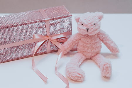 Pink Bear Plush Toy With Box