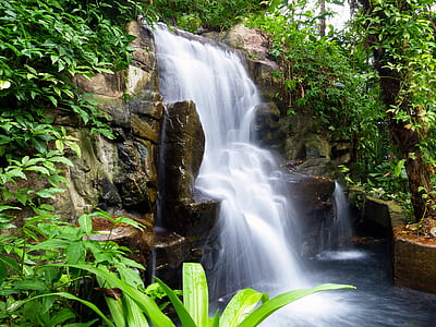 photography of water fall