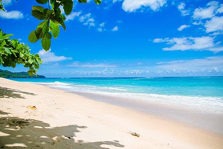 seashore and calm sea under blue sky