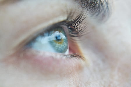 close up photography of person's eye