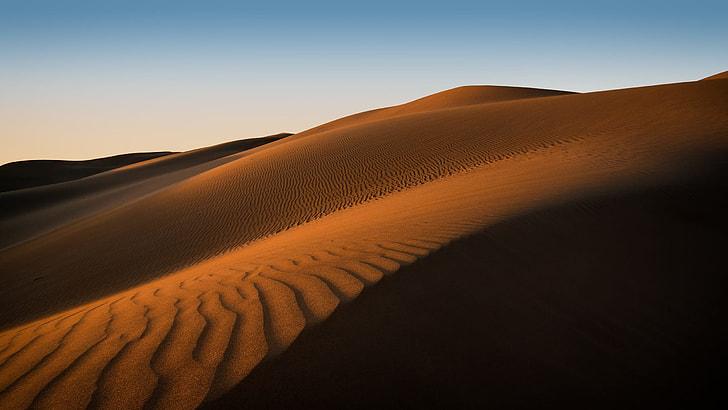 sand hill, wallpaper, adventure, barren, dawn, desert