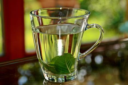clear glass mug filled of clear liquid