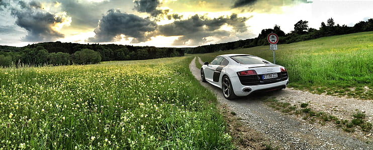 photography of silver Audi R8 near grass field