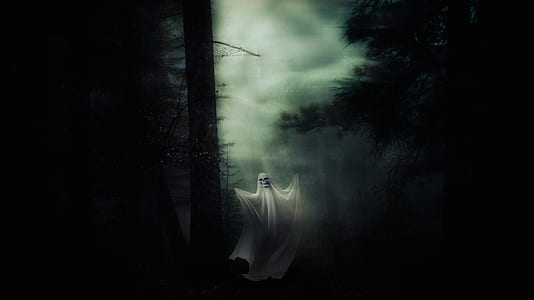 ghost in forest during night time