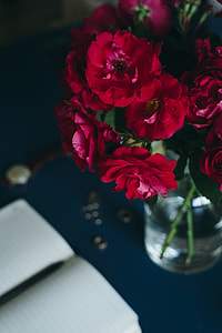 Lovely workplace with red roses