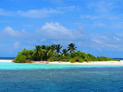 island near body of water