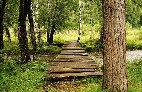 brown wooden river bridge on forest