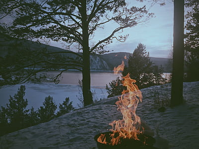 bonfire near lake photo