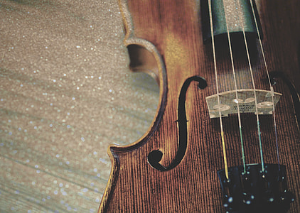 brown violin in focus photography