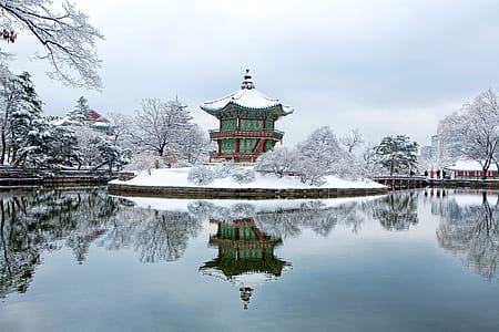 green and red pagoda covered of snow during daytime
