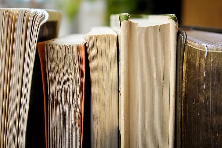 closeup photo of five books